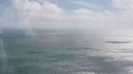 Brighton (5)