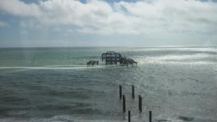Brighton (8)