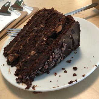 plant room cake 1